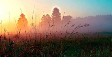 Раннее летнее утро